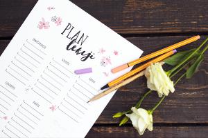 darmowe-plany-lekcji