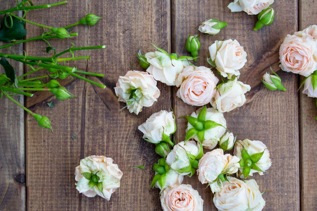 dekoracje-z-różami