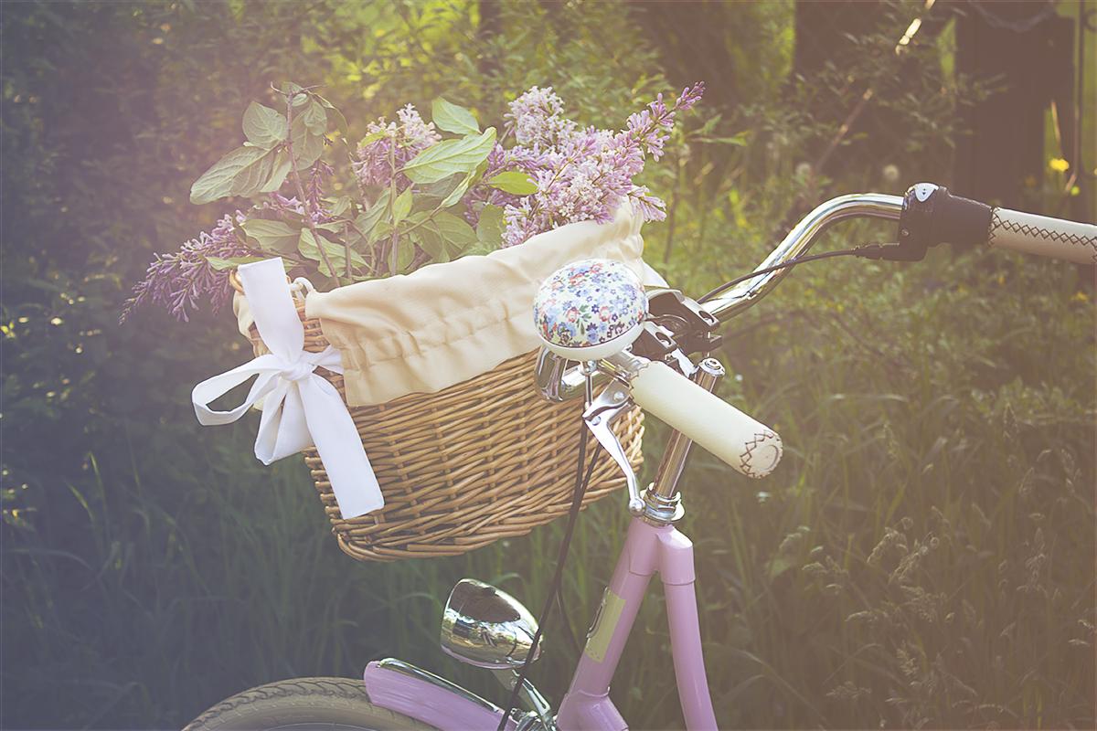 damski-rower-miejski
