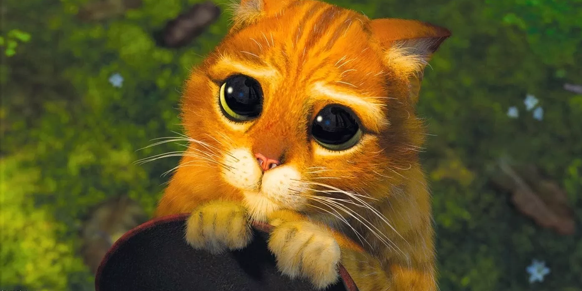 koty_kot_w_butach_shrek