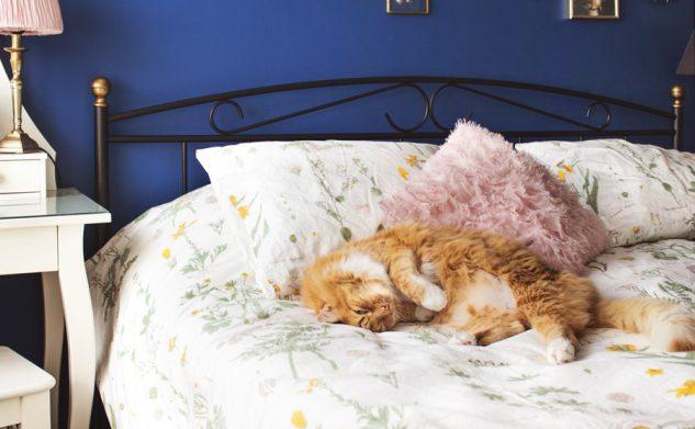 7 rzeczy, które umilają mi zasypianie