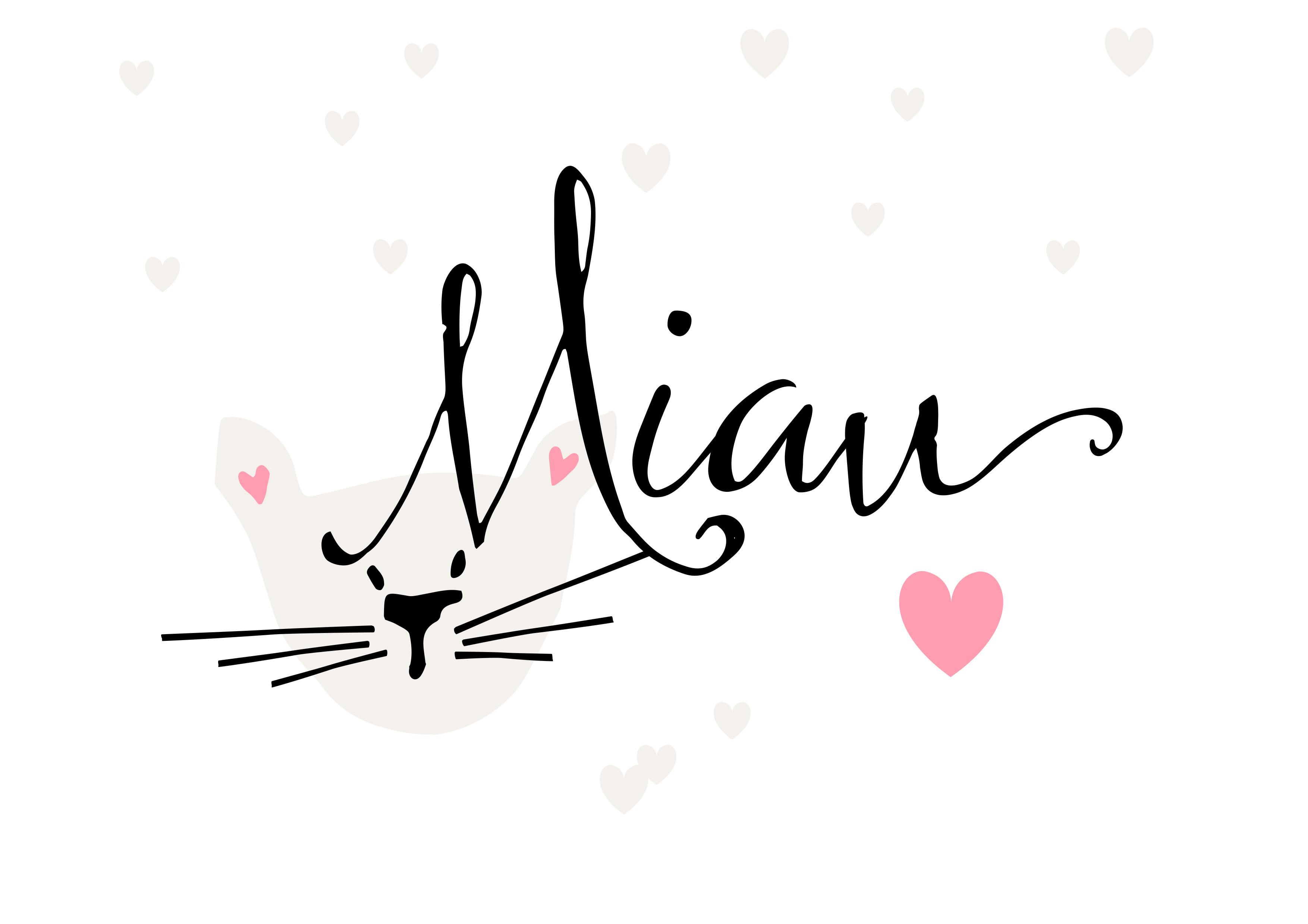 Co Koty Robią Nocą Plakat Dla Kociarzy My Pink Plum