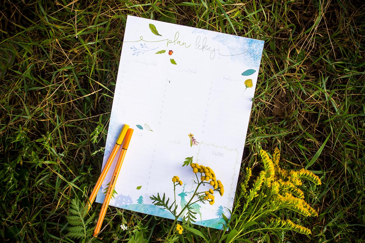 plany-zajęć-szkolne