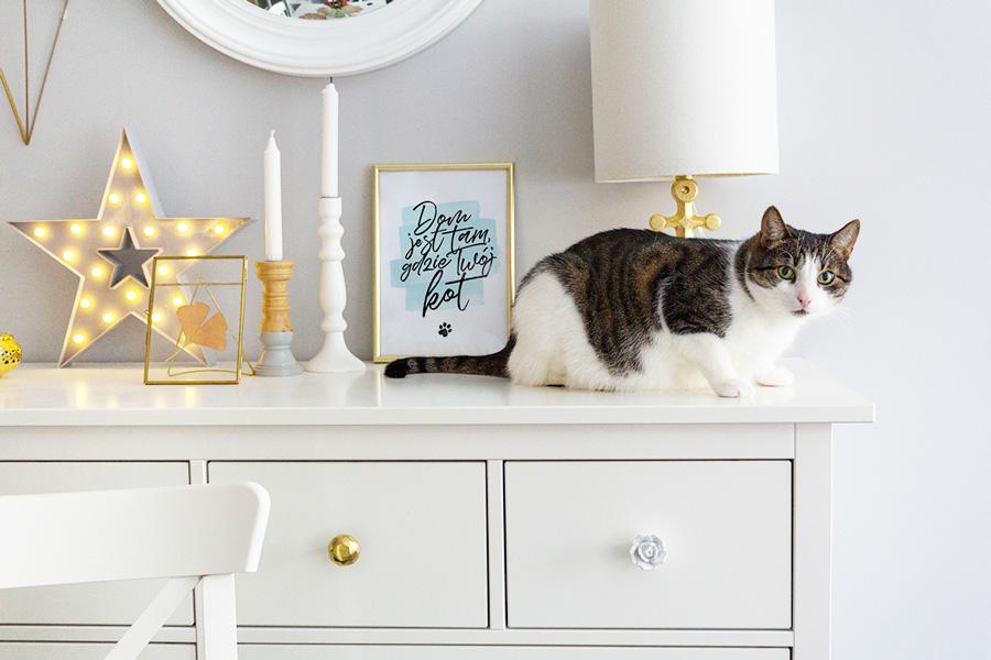 Tam jest dom, gdzie Twój... zwierzak! — plakaty do druku