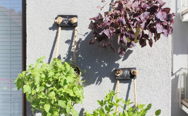 Nasz mini zielnik — wieszanie doniczek bez wiercenia w elewacji