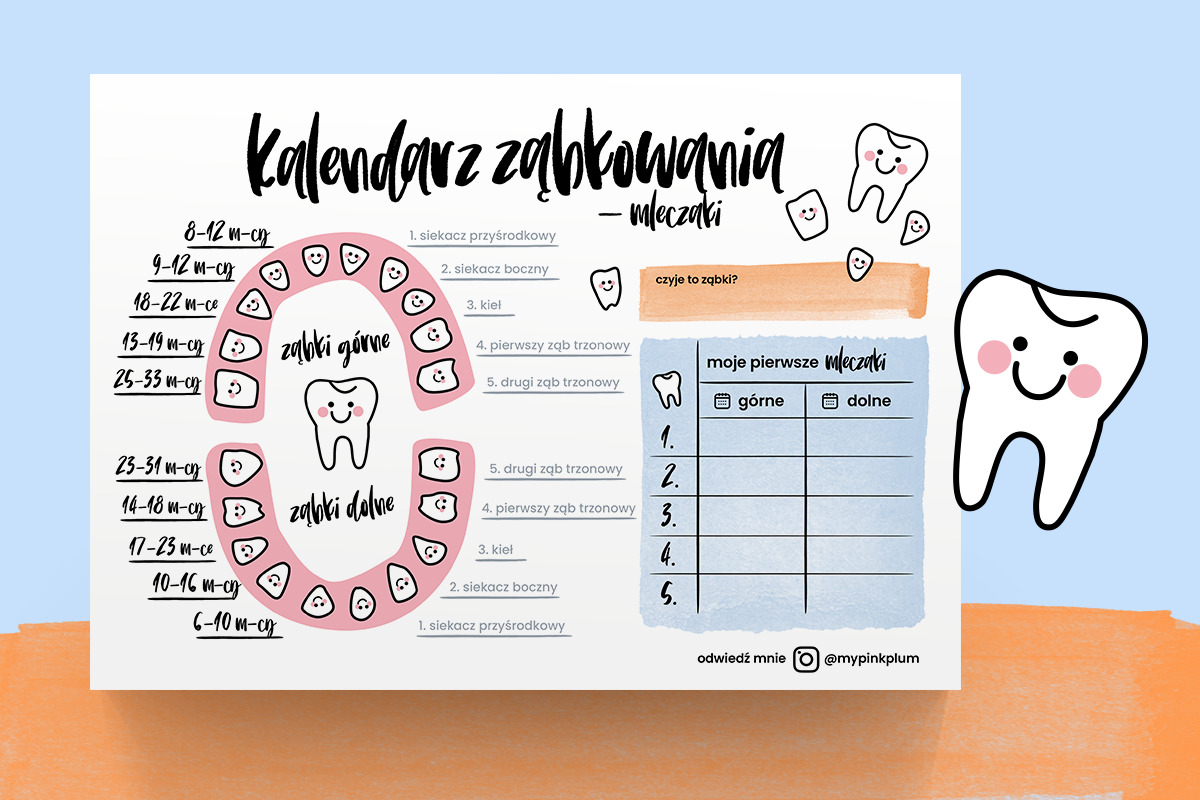 Kalendarz ząbkowania do druku